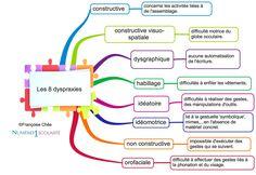 La dyspraxie, qu'est ce que c'est? Définitions. il existe 8 dyspraxies différentes, chacune ayant des conséquences différentes sur la scolarité de l'enfant.