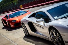 """""""The need for speed at the Lamborghini Academy in Imola"""" by @michaelturtle"""