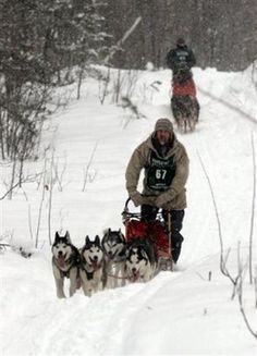 Dave Lundberg, of Monticello, Minn., is followed by Rob Lombard, of Iron River, Wis.Dave Lundberg, of Monticello, Minn., is followed by Rob Lombard, of Iron River, Wis., as they compete in the Apostle Islands Sled Dog Race, in Bayfield, Wis., Saturday, Feb. 4, 2006. The mushers had several inches of fresh snow, as they raced near the south shore of Lake Superior. (AP Photo/Paul M. Walsh)