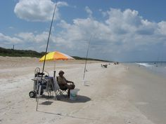 Florida Surf Fishing Beach Carts Learn how to catch any kind of fish with great tips including lures and bait at howtocatchfishnetwork.com
