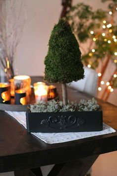 DIY. Tree made of moss. Base is chicken wire cornet. Wood stick is attached to styrofoam in a old sewing machine drawer. http://villaklaraberg.blogspot.no/