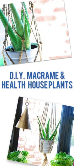 DIY Macrame and Healthy House Plants | How Does She
