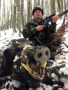 Wild Boar - Romania