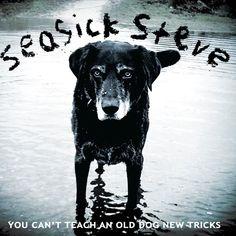 Seasick Steve - (2011) You Can't Teach An Old Dog New Tricks