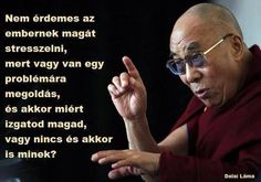 China Cautions Officials Against Supporting Dalai Lama And Practicing Religion Dalai Lama, Mahatma Gandhi, Daily Motivation, Motivation Inspiration, Osho, William Shakespeare, Biker Quotes, Education Humor, Celebration Quotes