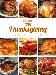 Get trusted recipes for preparing the perfect holiday bird including brines, deep-fried, roasted and more from home cooks like you.