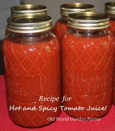 "Wow – I Could Have Made My Own V-8!"" Can Your Own Hot and Spicy Tomato Juice"