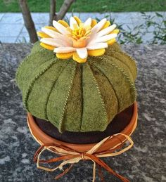 cactus in feltro cuscino della suocera con fiore giallo