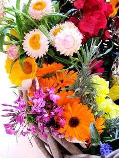 Beautiful Flowers Garden: Absolutely Beautiful Things: A Basket Of Fresh Garden Flowers Beautiful Flowers Garden, Diy Flowers, Fresh Flowers, Pretty Flowers, Colorful Flowers, Spring Flowers, Outdoor Flowers, Spring Bouquet, Vibrant Colors