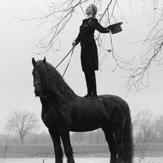 Grand   fabulous   horse   woman   relationship   love   mist   morning   ride  