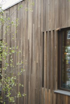 Thermally modified U. tulipwood at Maggie's Oldham designed by dRMM architects White Oak, Cladding, Pavilion, Creative Inspiration, Wall Design, Architects, Hardwood, Building, Home Decor