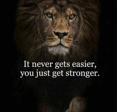 10 Inspirational And Motivational Quotes of the Day Motivational Quotes For Life, Meaningful Quotes, True Quotes, Great Quotes, Positive Quotes, Inspirational Quotes, Lion Quotes, Animal Quotes, Citation Motivation Sport