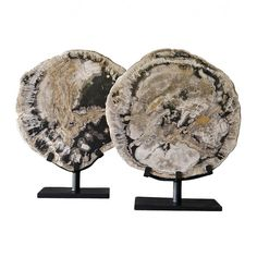 Michael Dawkins Home: City Furniture, Furniture Decor, Clay Design, Petrified Wood, Interior Accessories, Modern Decor, Decorative Items, Accent Decor, Home Furnishings