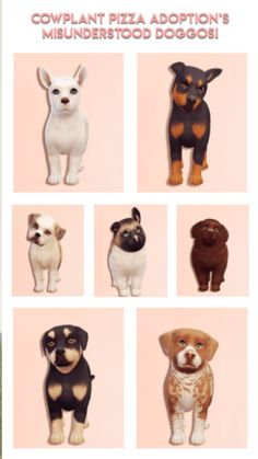 Misunderstood Doggos for Adoption for The Sims 4