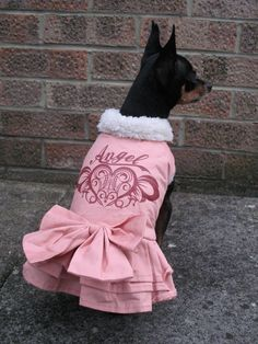 Chihuahua jacket Angel Puppy Winter dog coat pet puppy Yorkie clothes XS, S, M