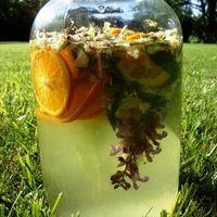 Akácos limonádé Plants, Mint, Plant, Planets