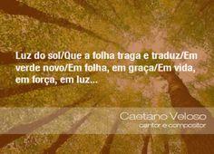 Luz do sol/Que a folha traga e traduz/Em verde novo/Em folha, em graça/Em vida, em força, em luz... - Caetano Veloso, cantor e compositor