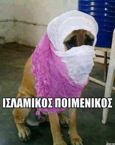 Greek Memes, Funny Memes, Jokes, Just Kidding, True Words, Just For Laughs, Funny Photos, Funny Animals, Kids