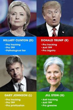 Read The Fine Print, America. Dr. Jill Stein Green Party.