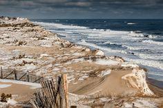 Cape Cod National Seashore Winter metallic print for sale