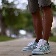 Nike DUNKSB Homme vert blanc
