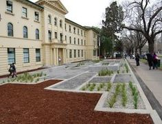 Victorian College of the Arts raingardens   Clearwater - training and events on sustainable urban water management