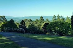 The National Rhododendron Gardens, Olinda is now called the Dandenong Ranges Botanic Gardens, they are surely the best gardens near Melbourne. Linden Gardens, Clouds Hill, Largest Waterfall, Luxury Escapes, Garden Entrance, Yarra Valley, Croydon, Ranges, Pathways