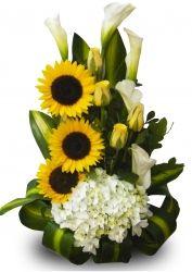 Arreglos florales variados http://www.donregalo.pe/Variados