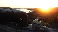 Vanilla & Chocolate cupcake, served with a sunset!