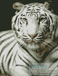 White Tiger cross stitch pattern.