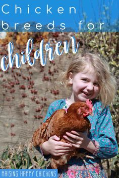 Which chicken breeds are good for children to incubate, hatch and raise. Some breeds are better than others for being around kids. Find out which ones are right for your family here. #raisinghappychickens Raising Meat Chickens, Raising Backyard Chickens, Important Facts, Chicken Breeds, Raising Kids, How To Stay Healthy, Children, Poultry, Homesteading