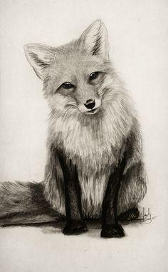 Fox Say What?! Art Print by Isaiah K. Stephens | Society6