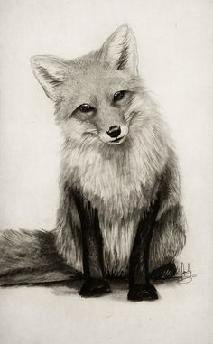 Fox Say What?! Art Print by Isaiah K. Stephens | Society6