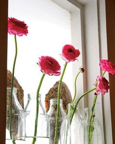 flowers in jars