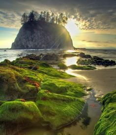 Found this gorgeous place by accident on my trip thip to the northwest----Second Beach Haystack, Olympic National Park. Free entrance to all national parks - State Parks, Wa State, Places To Travel, Places To See, Beautiful World, Beautiful Places, Art Et Nature, Wow Photo, Photos Voyages
