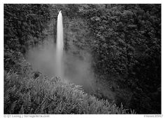 Akaka Falls. Hawaii, USA
