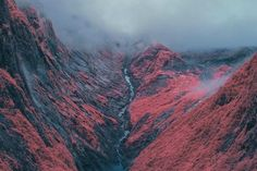 Surreal Infrared Nature Photography by Bradley G Munkowitz #inspiration #photography