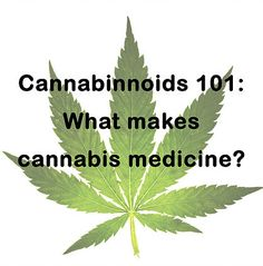 GHC individualized treatment plans promote safe practices of medical cannabis and cannabis oil alternatives to manage a health condition.