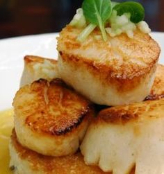 Scallop Recipes | Scallop Saute  Sea Scallops are an excellent pairing with Torrontes. Great, simply recipe.