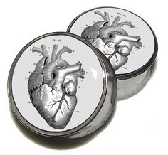Hey, I found this really awesome Etsy listing at http://www.etsy.com/listing/115829892/heart-diagram-plugs-1-pair-sizes-2g-0g