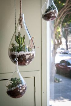 Hanging succulent terrariums in tear drop glass candle holders.  Love these!
