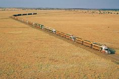 Only In Australia Will You See This  There are 17 trucks, each with 3 trailers - 2 decks per trailer.  There are 102 decks of cattle and there would be approximately 28 cattle per deck.