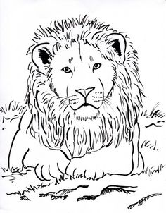 Week 3 Upside Down  lots of animal coloring pages lion coloring page 001