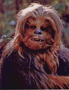 #1 Chewbacca, I love this walking carpet. He was Goofy, Sometimes Scary, but always entertaining. One of the best side-kicks in the history of film.