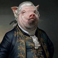Animal Dress Up, Pig Wallpaper, Pig Illustration, Pig Art, Surrealism Painting, Art Series, Animal Party, Surreal Art, Funny Art