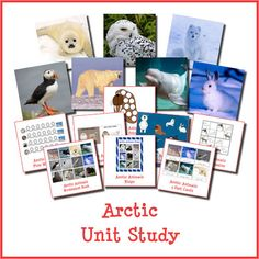 19 page Arctic Unit Study teacher's guide with facts about the Arctic and more than 30 different suggested activities   You get more than 270+ pages of Arctic printables   Enough Arctic-themed learning for a unit study that will keep your kids busy all winter long   Includes suggested books, science, fine motor, math, and early literacy activities as well as lots of FUN!   Instant digital downloads product in PDF format   Great for kids in preschool through grade 2