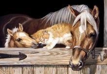 """Алмазная мозаика """"Кот и лошади"""""""