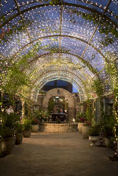Romance at The Grounds of Alexandria- using the cafe as a wedding reception! Wedding Venues Sydney, Wedding Reception Venues, Best Wedding Venues, Wedding Places, Chapel Wedding, Event Venues, Wedding Themes, Luxury Wedding, Reception Layout