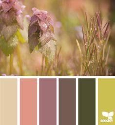 Another lovely color palette Colour Pallette, Color Palate, Colour Schemes, Color Combos, Color Patterns, Decoration Palette, Deco Nature, Nature Nature, Design Seeds