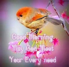 Good Morning May God Meet Your Every Need